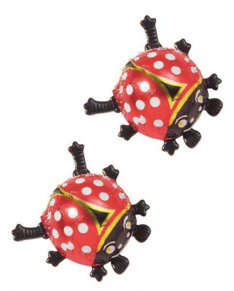 Käferwelt - Glückskäfer