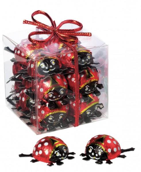 Käferwelt - Geschenkbox