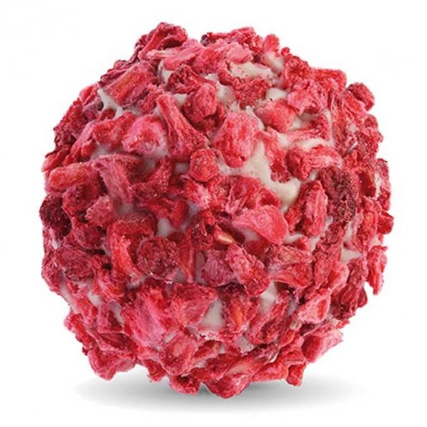 Himbeer Holunderblüten Trüffel