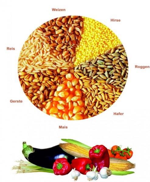 7-Kornbrei Gemüse